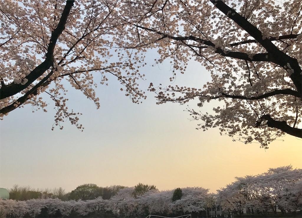 f:id:yamato78:20180404080329j:image