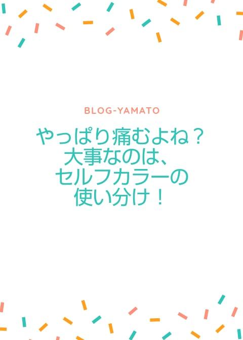 f:id:yamatoblogger:20181018214014j:plain
