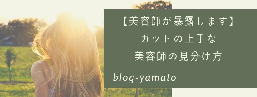 f:id:yamatoblogger:20181022111102j:plain