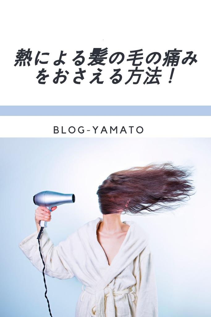 f:id:yamatoblogger:20181109234227j:plain