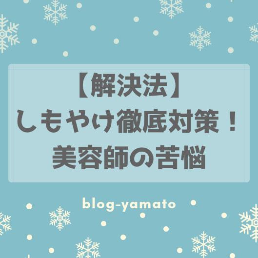 f:id:yamatoblogger:20190115074944j:plain