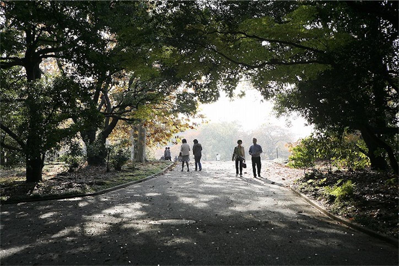 f:id:yamatono11:20201006100311j:image