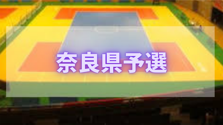 f:id:yamatono11:20210226181105p:image