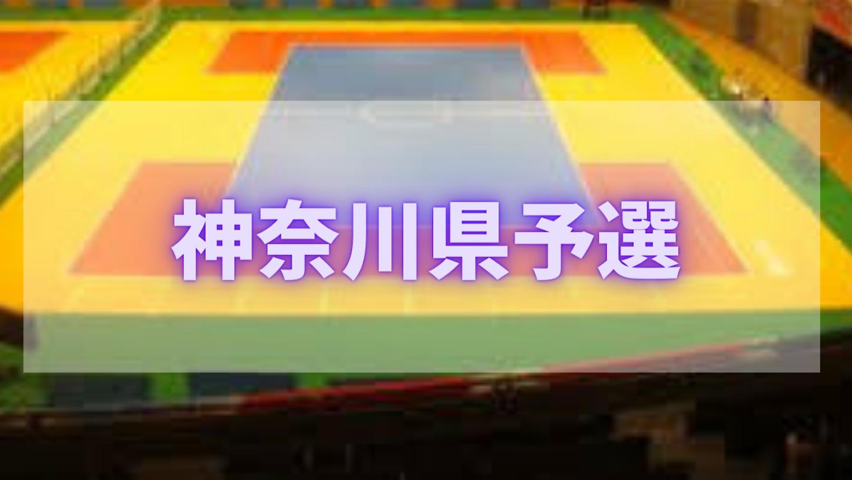 f:id:yamatono11:20210311182720p:image