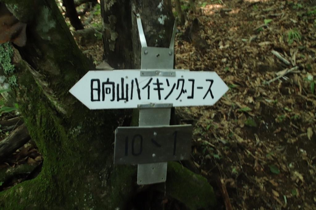 f:id:yamatori0422:20180827124140j:plain