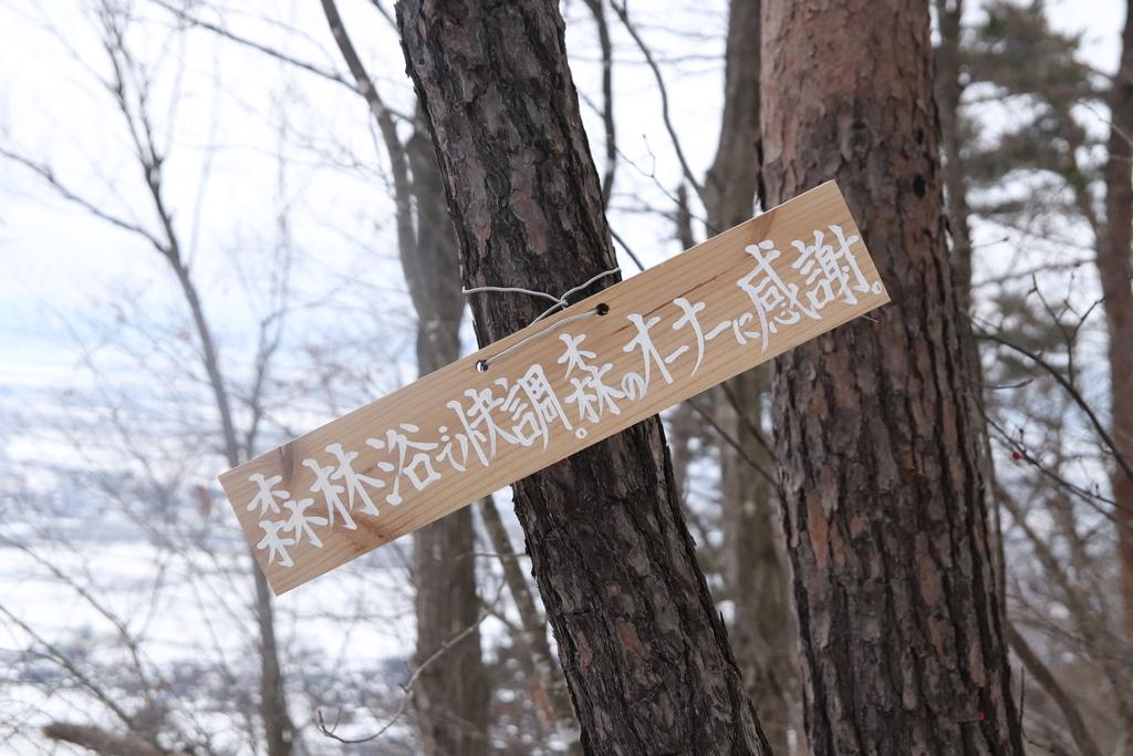 f:id:yamatori0422:20190113173225j:plain