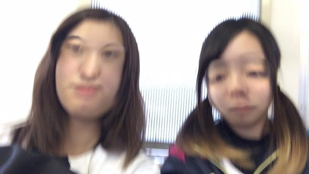 f:id:yamatori0422:20190205175853j:plain