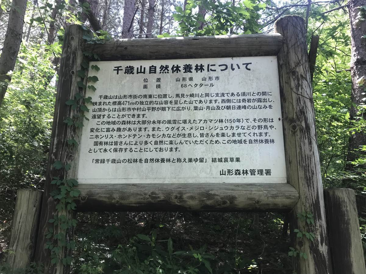 f:id:yamatori0422:20190524144147j:plain