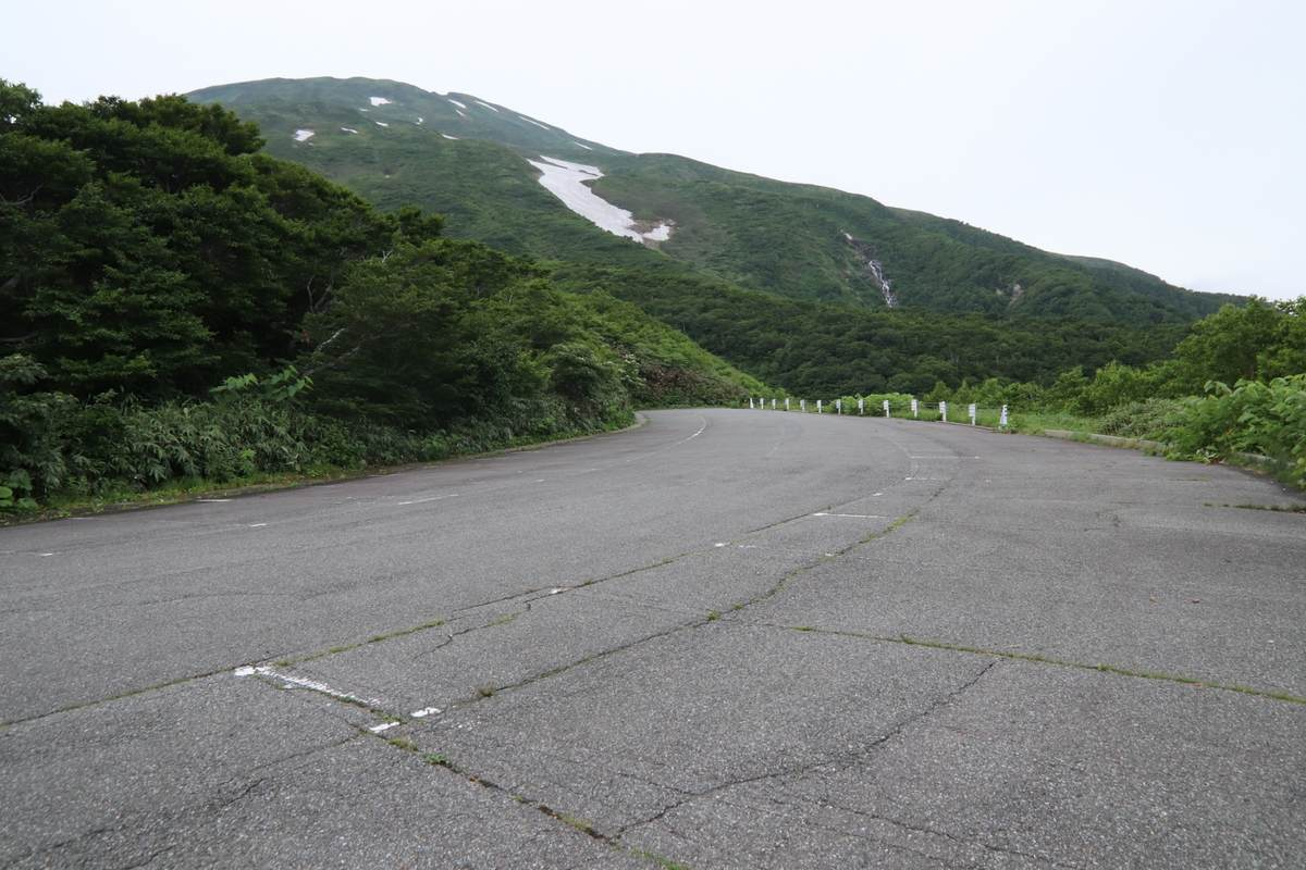 f:id:yamatori0422:20190723112421j:plain