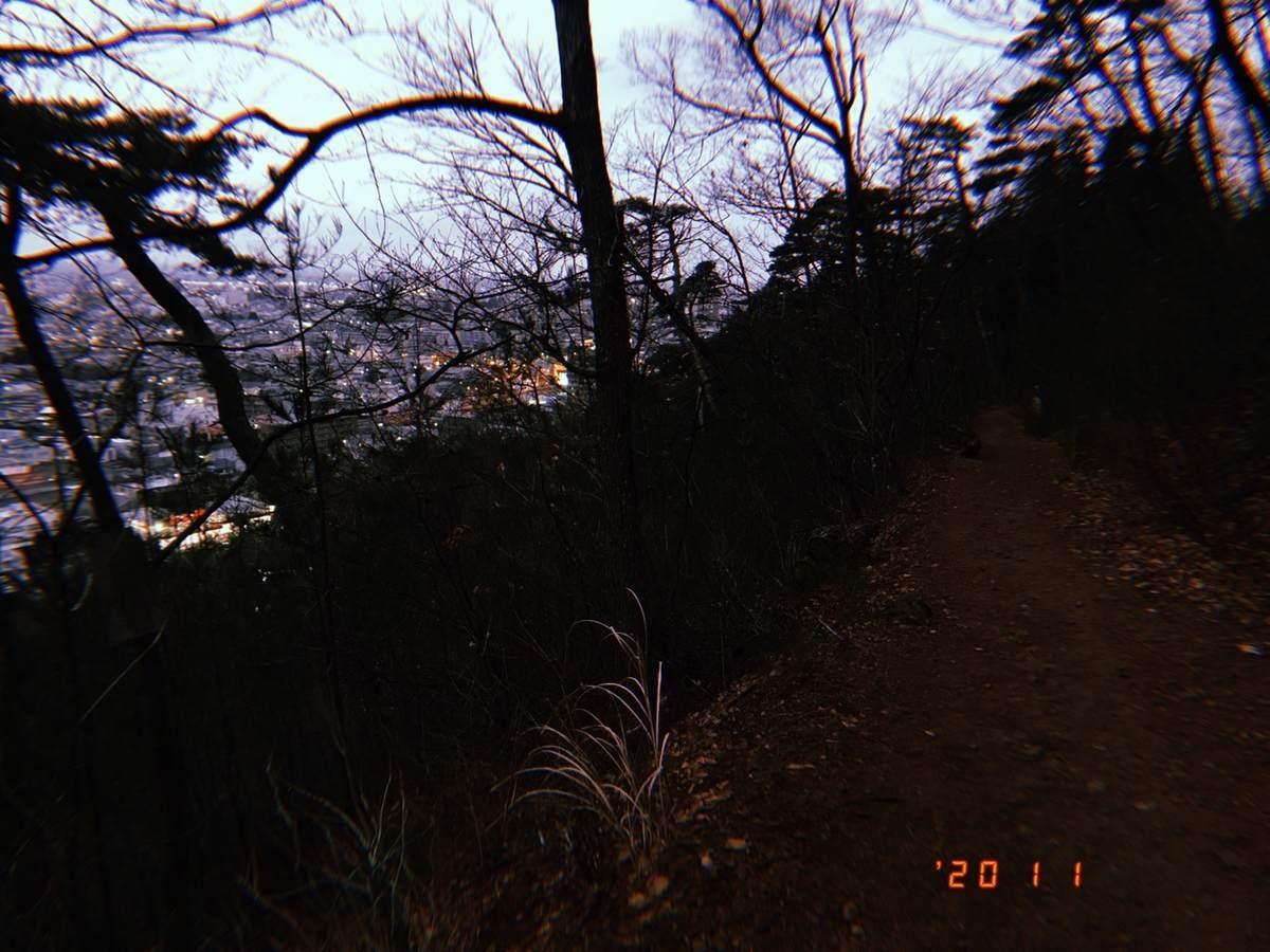 f:id:yamatori0422:20200101194401j:plain