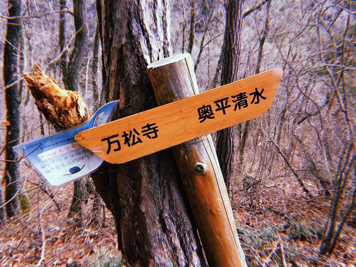 f:id:yamatori0422:20200103152143j:plain