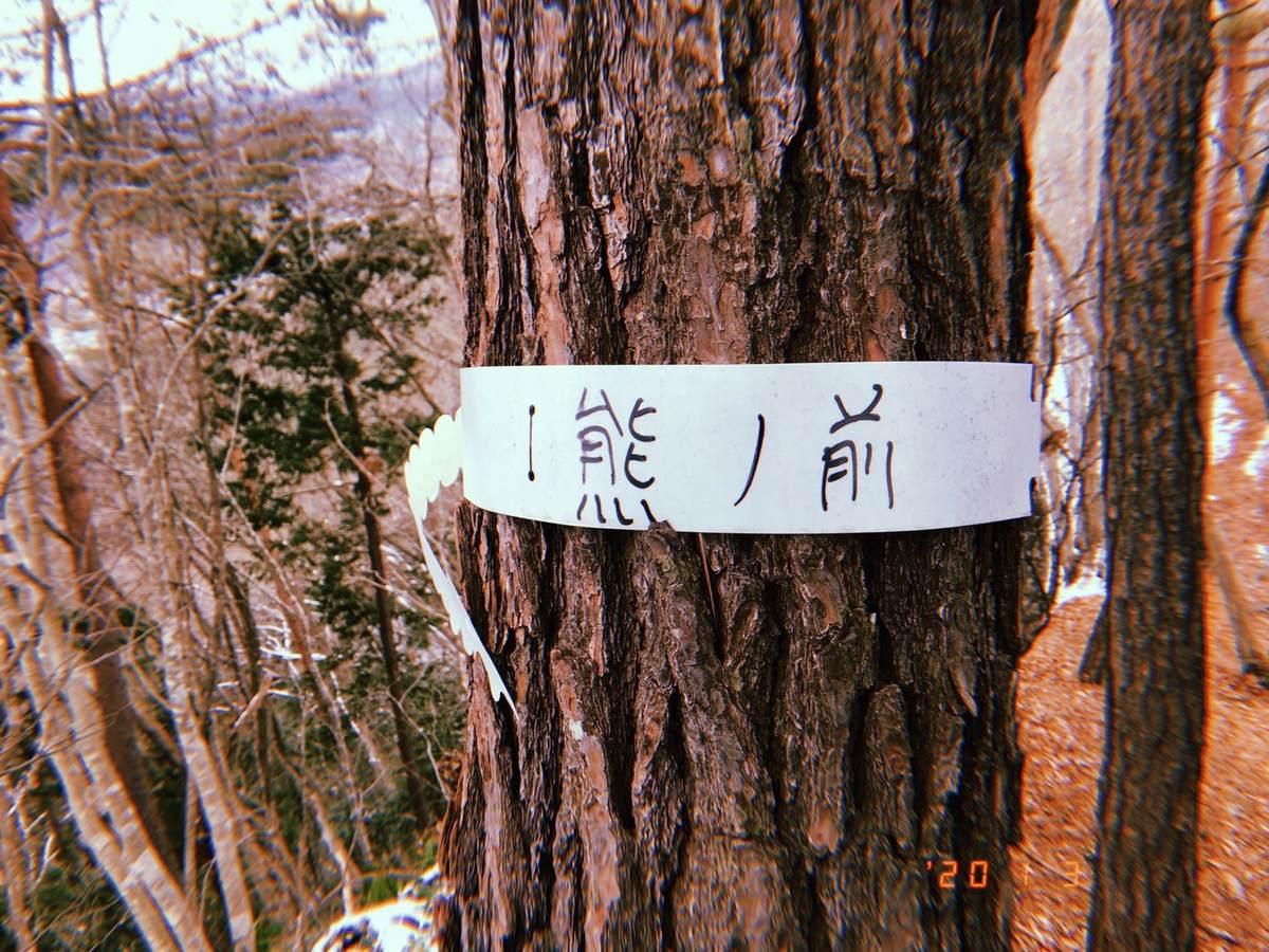 f:id:yamatori0422:20200103154334j:plain