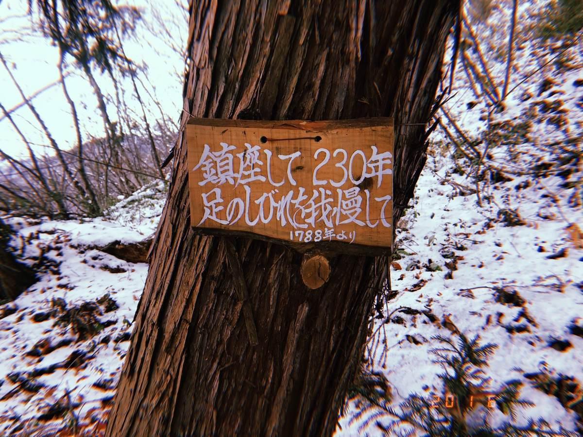 f:id:yamatori0422:20200106215808j:plain