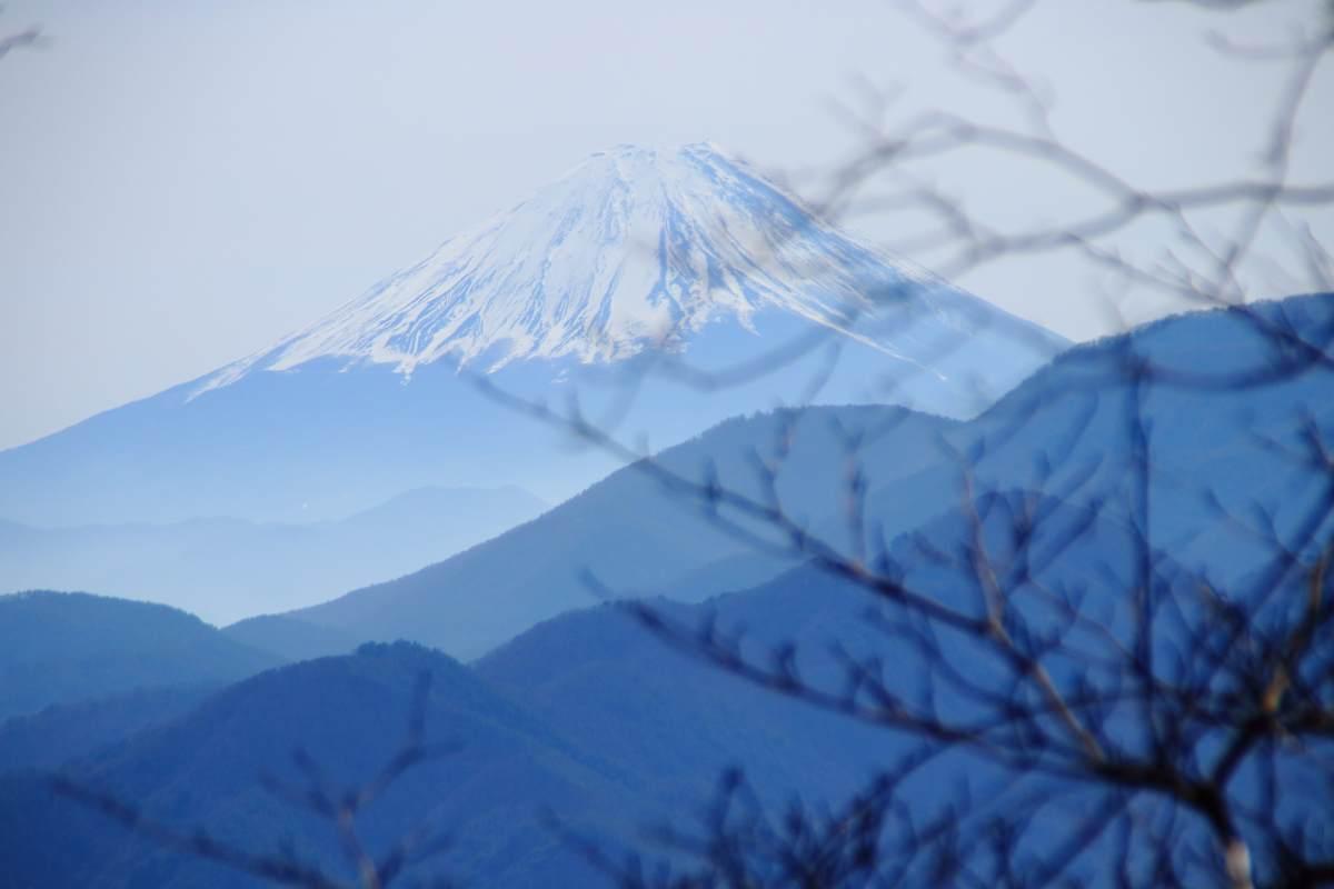 f:id:yamatori0422:20200313104945j:plain