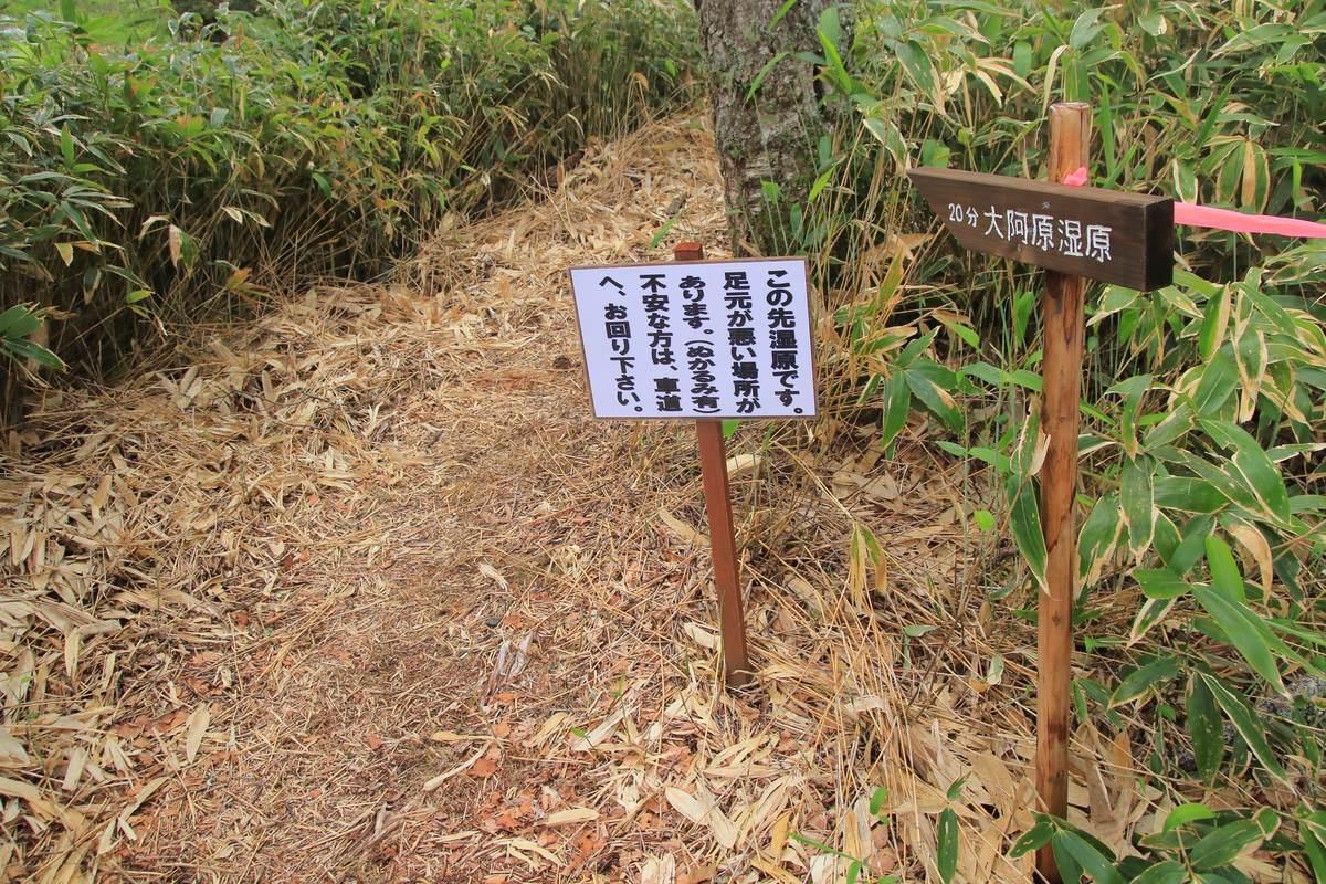 f:id:yamatori0422:20200625212238j:plain