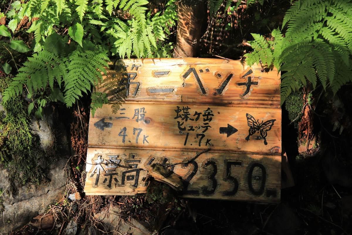 f:id:yamatori0422:20200801131346j:plain