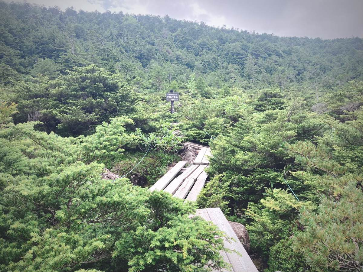 f:id:yamatori0422:20200911211212j:plain