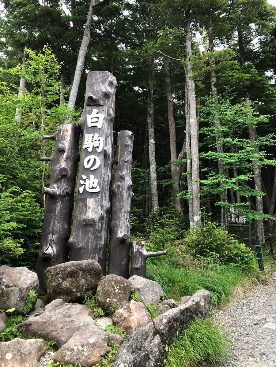 f:id:yamatori0422:20200913173150j:plain