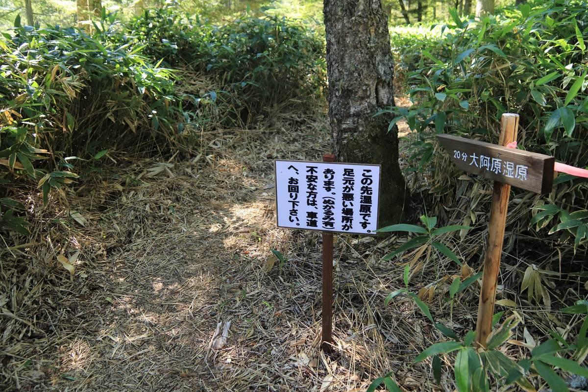 f:id:yamatori0422:20201011110113j:plain