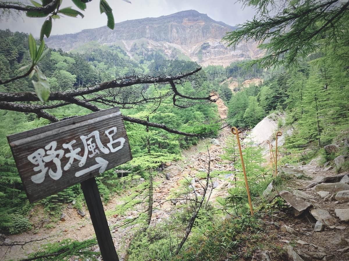 f:id:yamatori0422:20210712172619j:plain