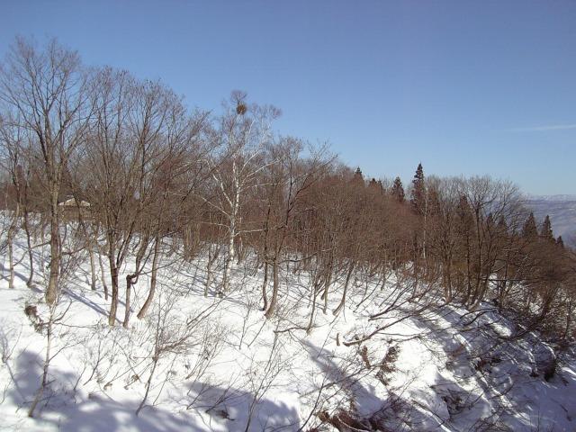 赤倉温泉スキー場6