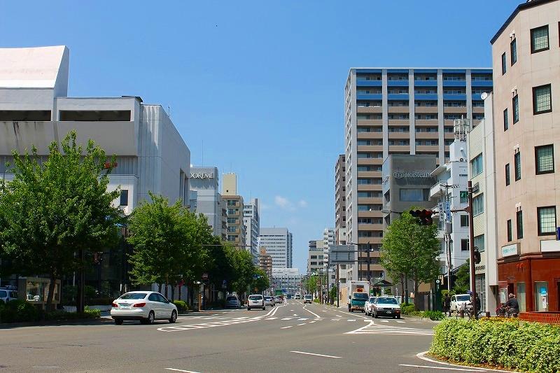 f:id:yamatsutsuji:20160612213850j:plain