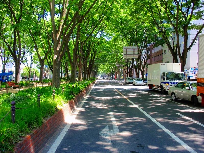 f:id:yamatsutsuji:20160612213851j:plain