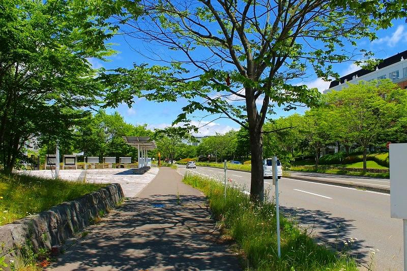 f:id:yamatsutsuji:20160612214028j:plain