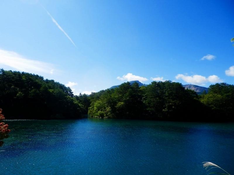 f:id:yamatsutsuji:20160801222914j:plain