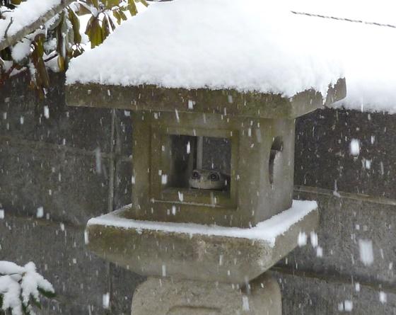雪の石灯籠