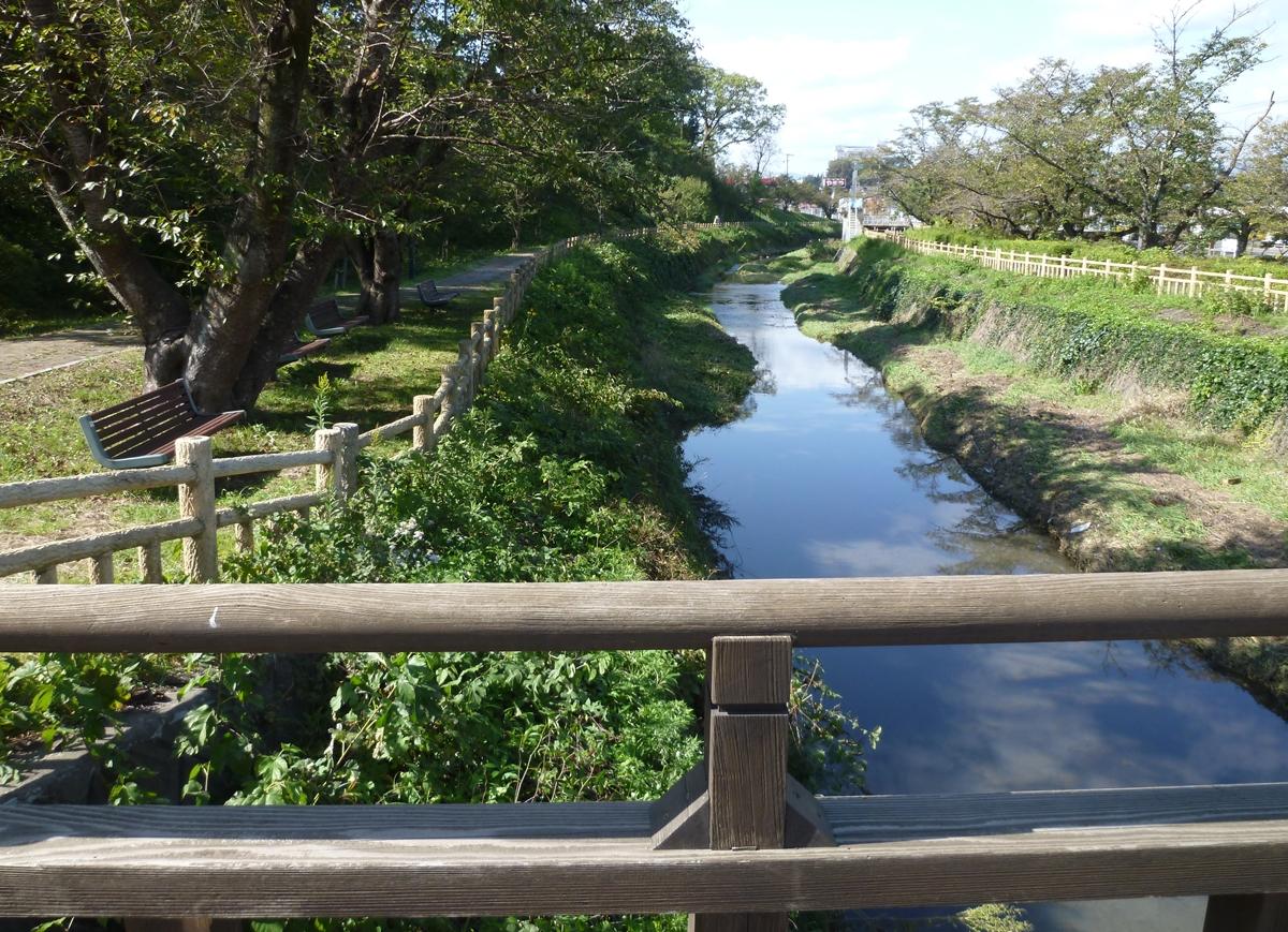 橋の上から見た公園を流れる小川