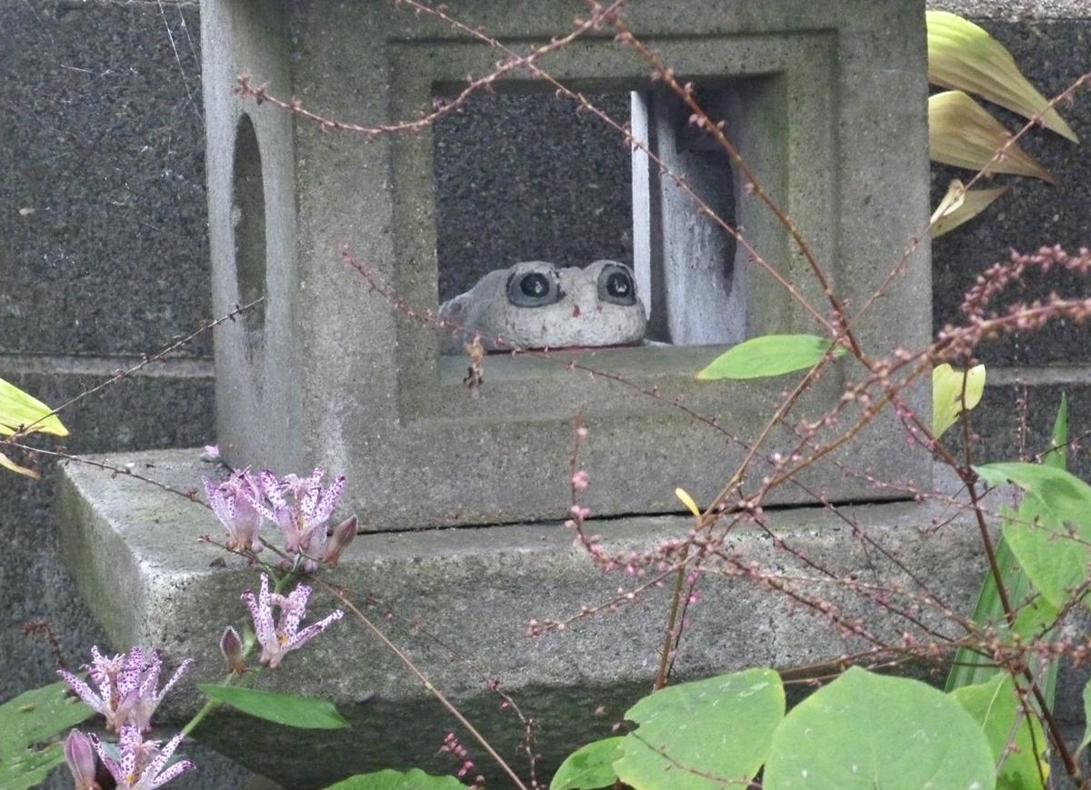 花や植物に囲まれた石灯籠と石製のカエル