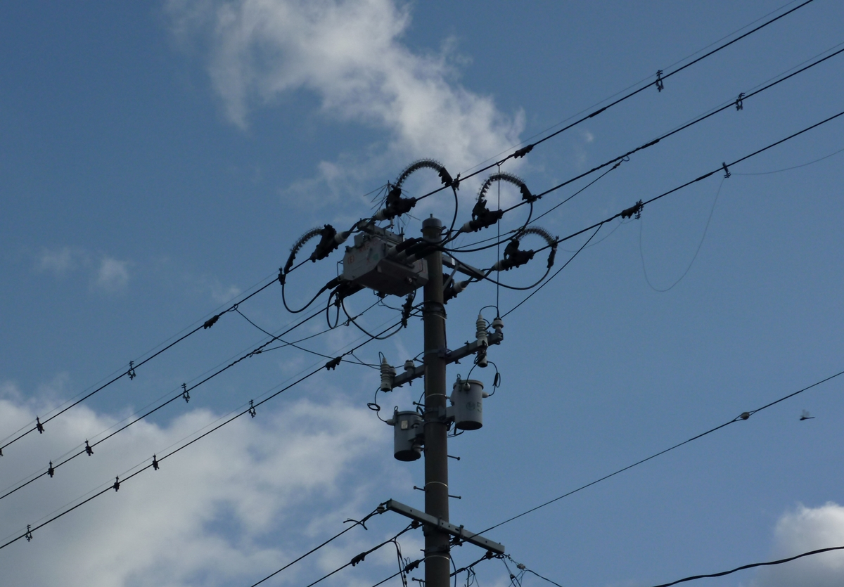 電柱とトンボ