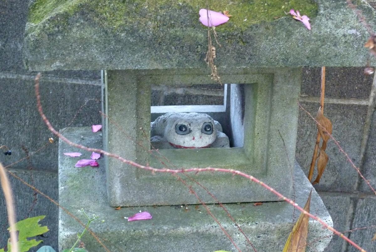 散った山茶花の花びらを乗せた石灯籠と石製のカエル