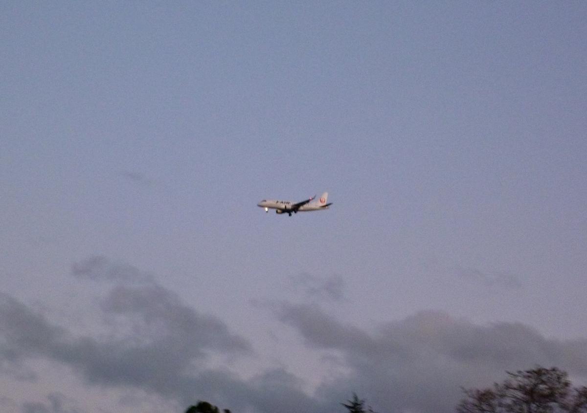着陸寸前のジェット旅客機