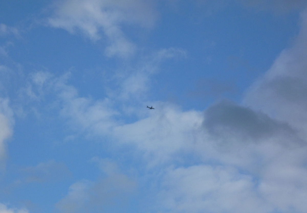 着陸前、高度を下げながら旋回するジェット旅客機
