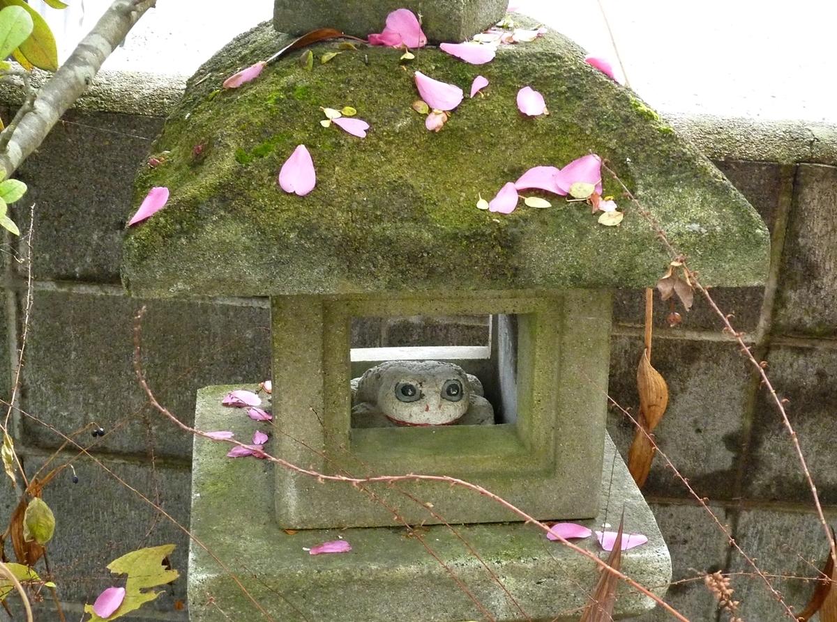 散った山茶花さざんかの花びらだらけの石灯籠と石製のカエル