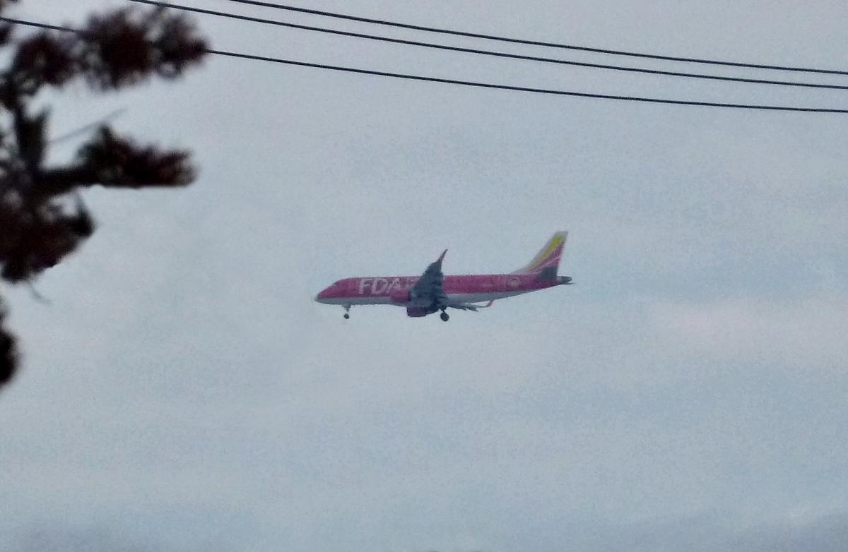 着陸態勢の赤い旅客機