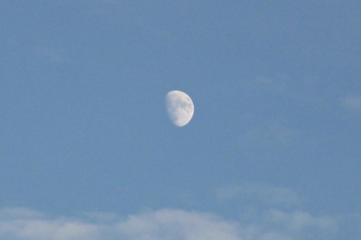 日中の空と月