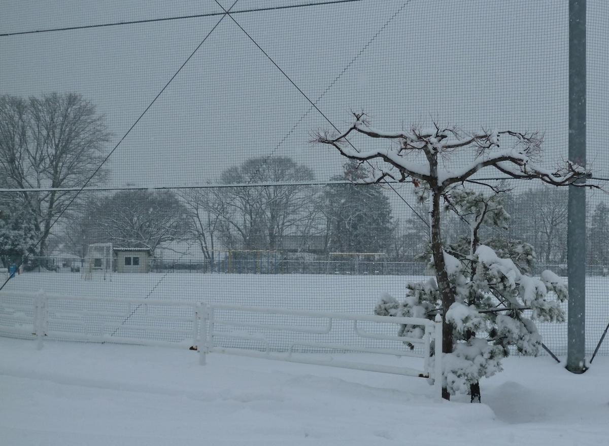 雪が降るグラウンド