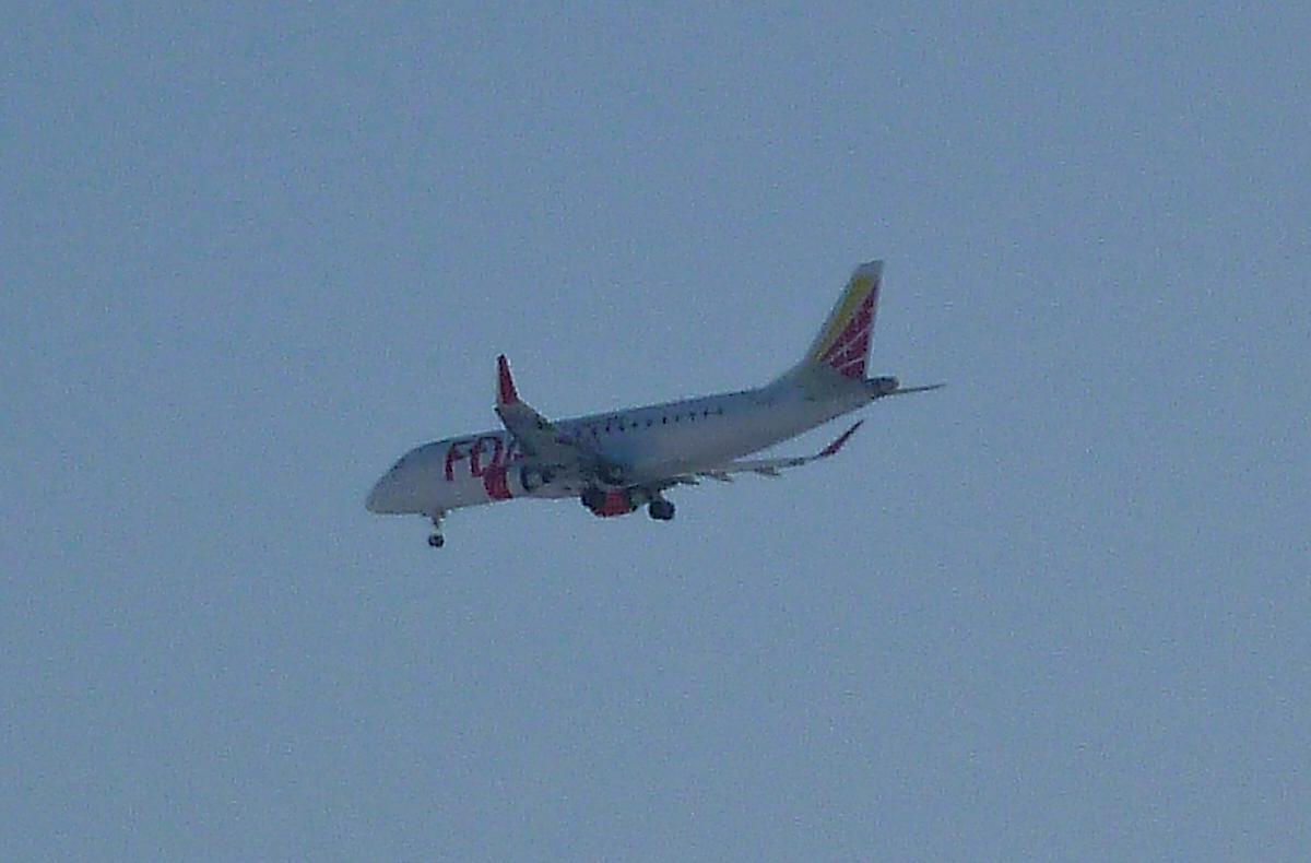 旅客機 FDA 着陸態勢