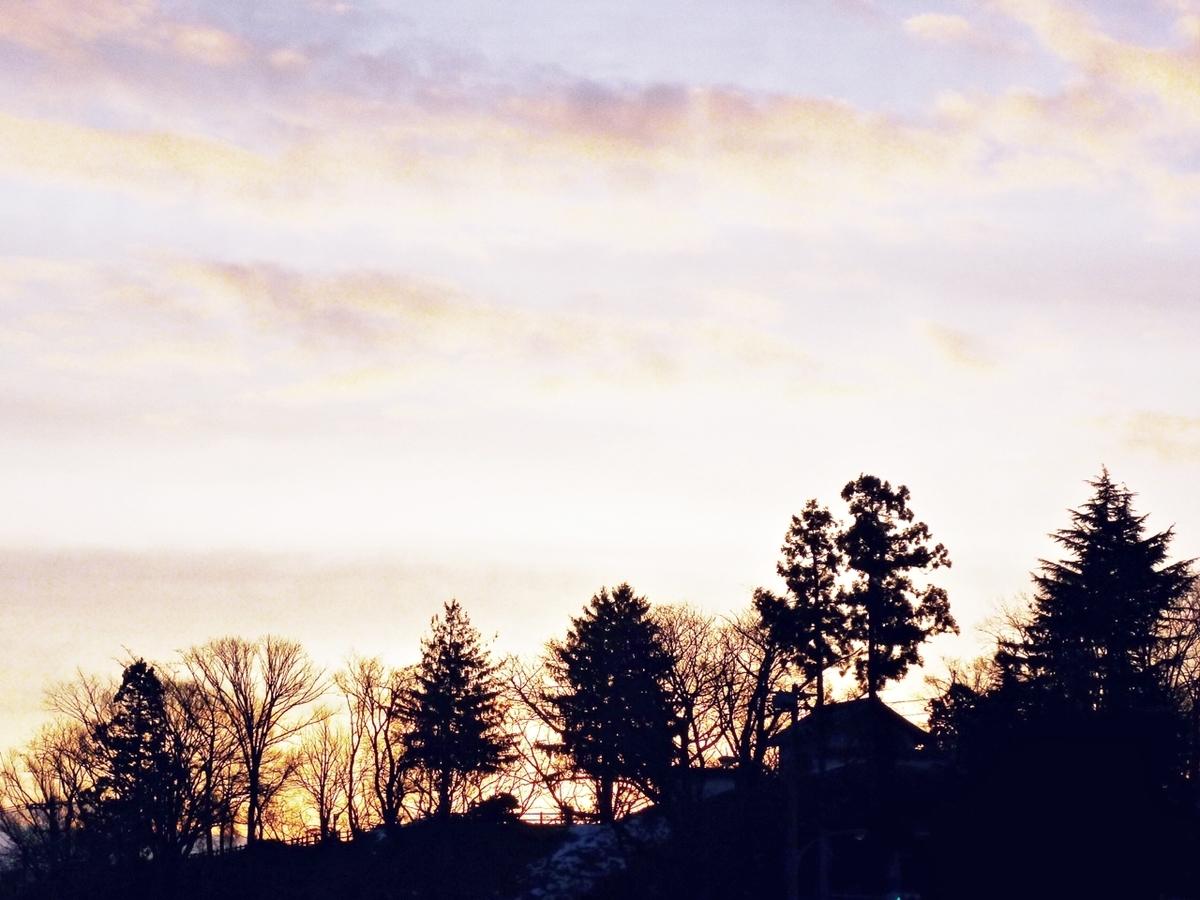 朝日が昇る直前 空 雲 林
