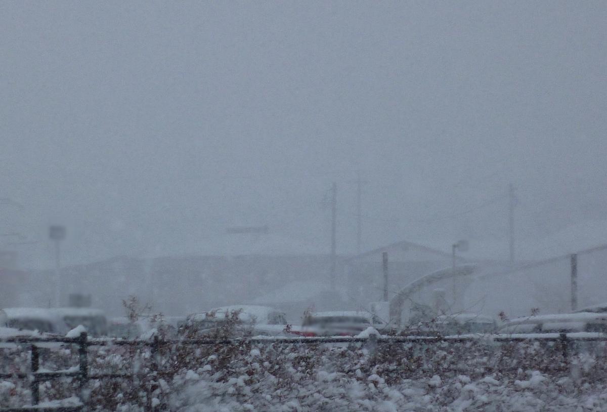 病院 通院 吹雪 かすむ 街