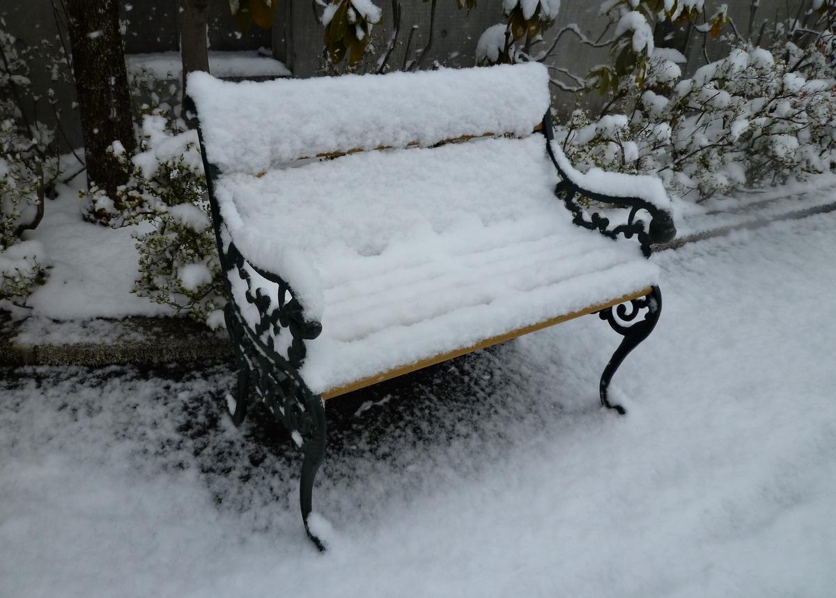 雪で座れないベンチ