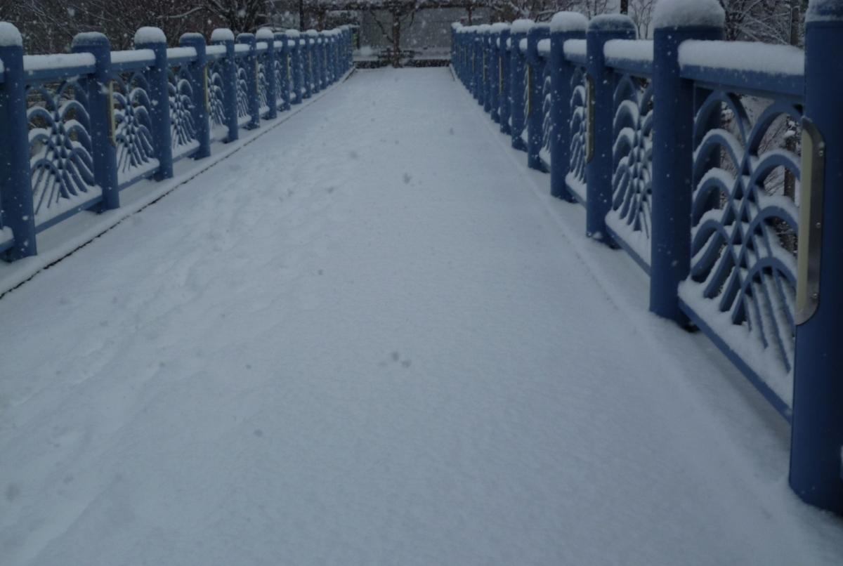 雪の積もった青い橋