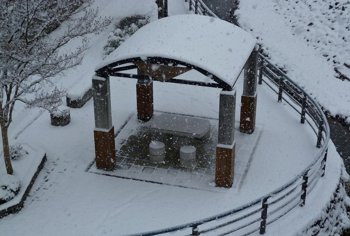公園 東屋 吹雪