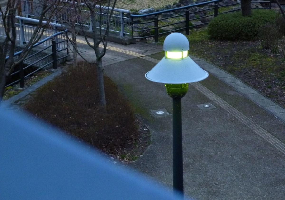 公園 ライト