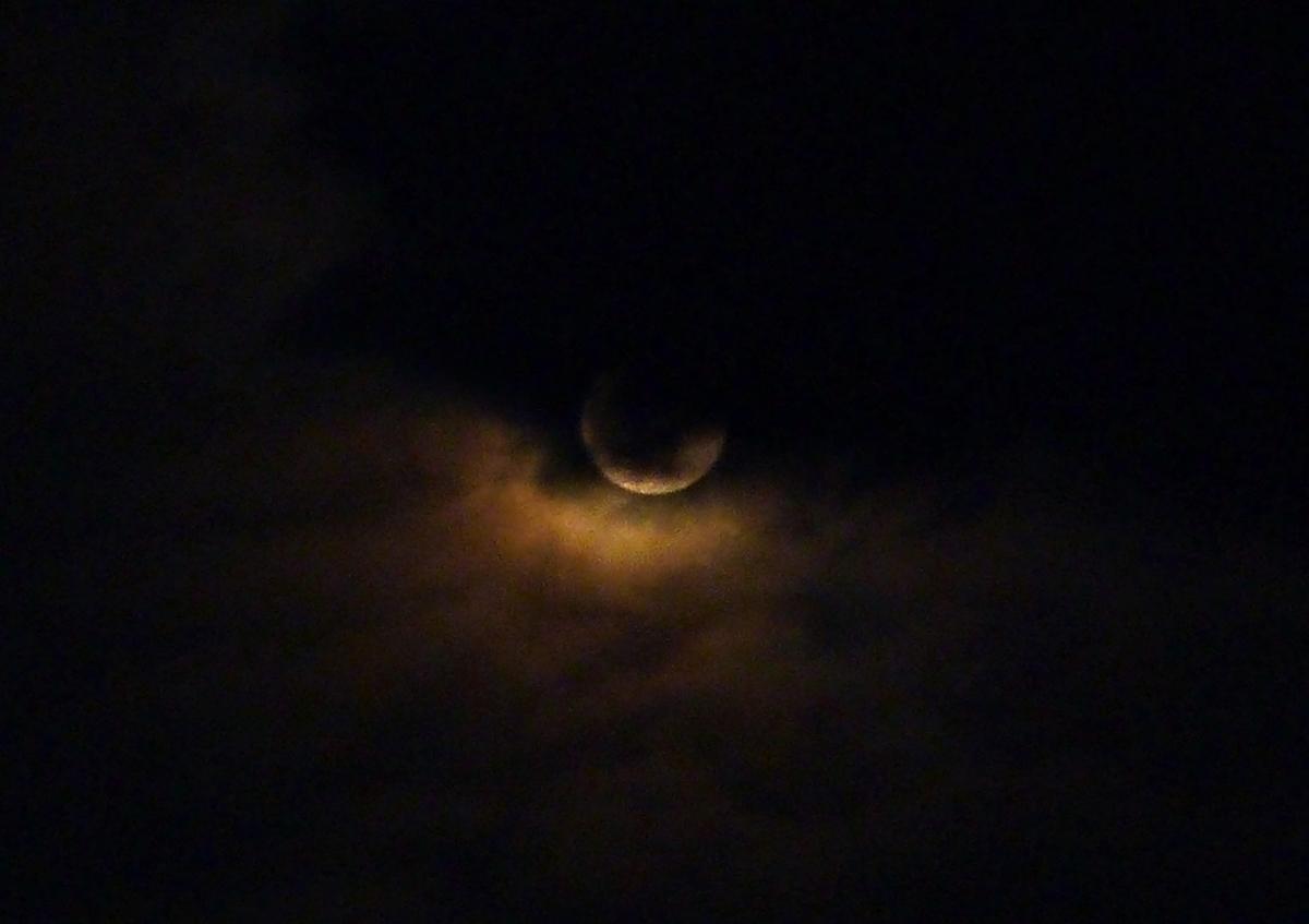 『麒麟がくる』16回 道三と高政の戦阻止のため光秀奔走