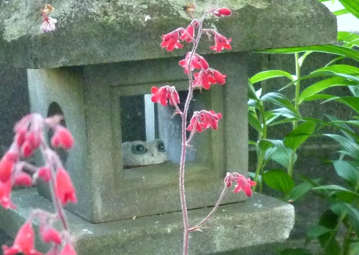 石燈籠 石製のカエル 赤い花