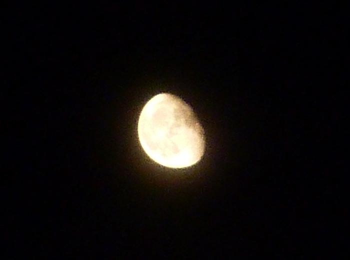 梅雨の晴れ間の月夜